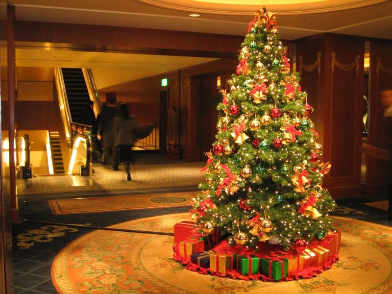 celebrar la Navidad al estudiar en el extranjero: Tokyo